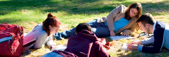 Group of students studying on the grass