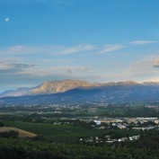 The landscape of Paarl