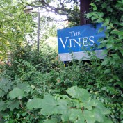 The Vines: a residence hall in London