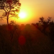 Sunrise at Kruger National Park
