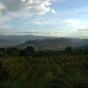 Orvieto from Ripisena