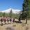 Thumbnail of Group hiking