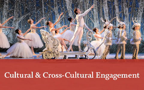 Cultural and Cross-Cultural engagement